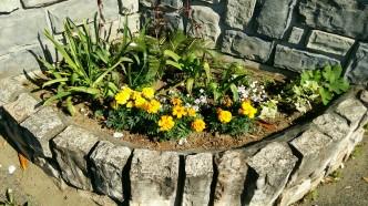 花壇右側の写真