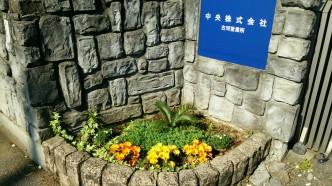花壇左側の写真