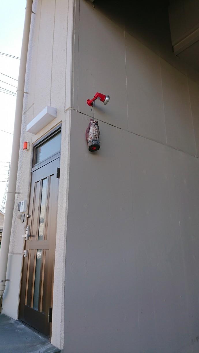 玄関前にフクロウの置物です